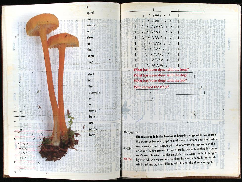 mushroom-book1